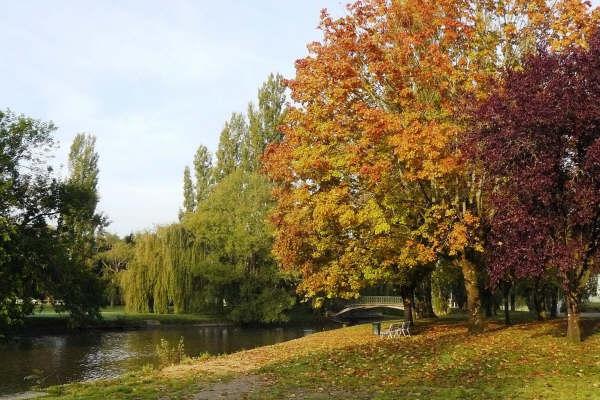 automne_g2