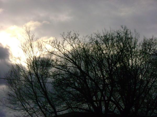 photo-3640.jpg