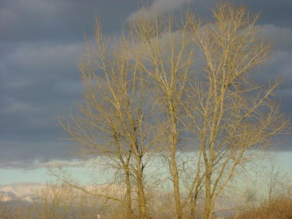 photo-3667.jpg
