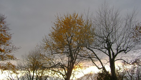 photo-3329.jpg