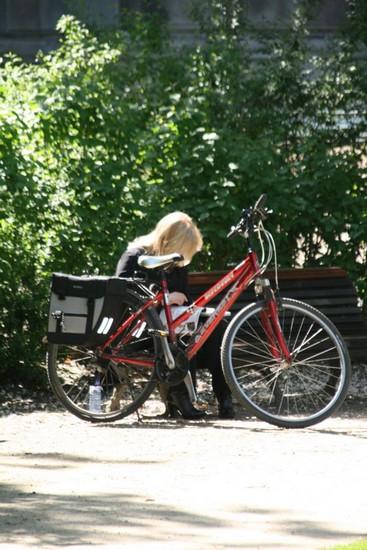 img_0141bicyclette.jpg