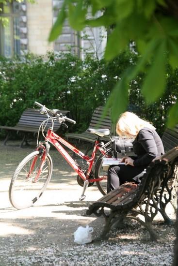 img_0147bicyclette.jpg