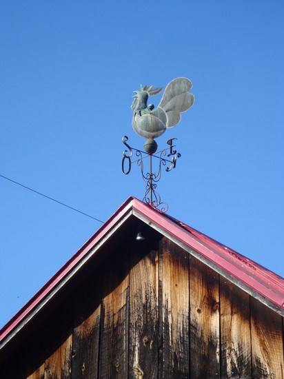 photo-039_girouette.jpg