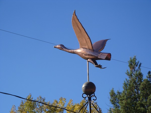 photo-045_girouettes.jpg