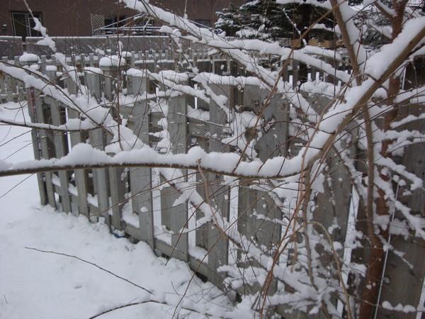 photo-079_neige.jpg