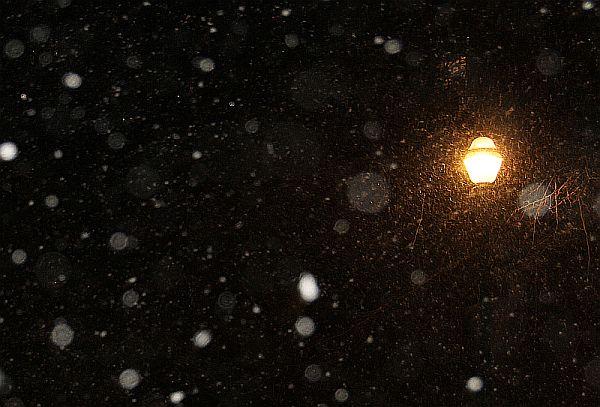 2010-12-01-lali-neige-clipboard02.jpg