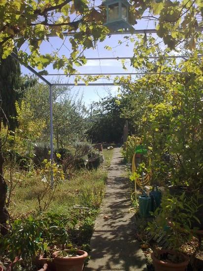 mon-jardin-en-vrac.jpg