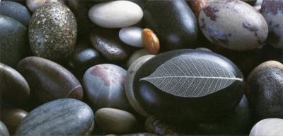 Pebbles - Photo de Laurent Pinsard