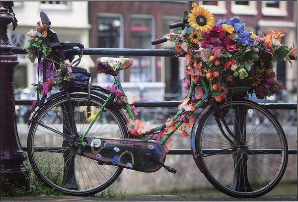 Amsterdam - Photo de Ben Daimon