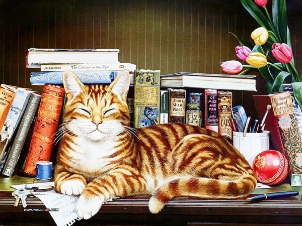 Le chat et les livres - illustration de Geoffrey Tristam
