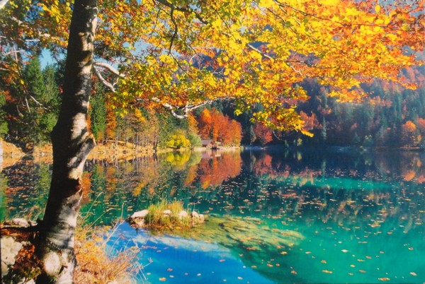 Parco naturale dei laghi di Fusine