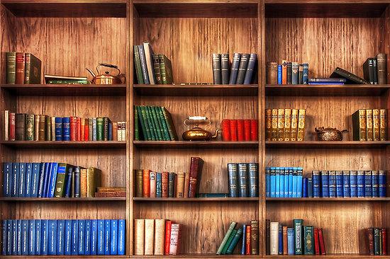 Book Shelf - photo de Svetlana Sewell