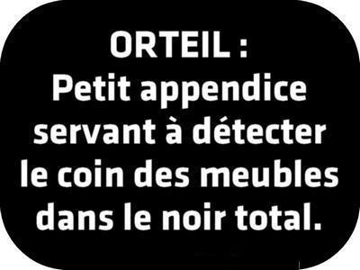 ORTEIL