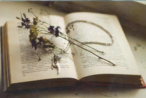 Livre ouvert, chaîne et fleurs
