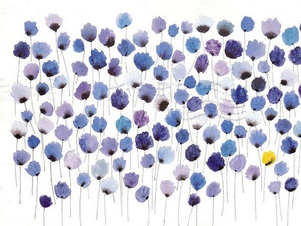 A field of blue flowers