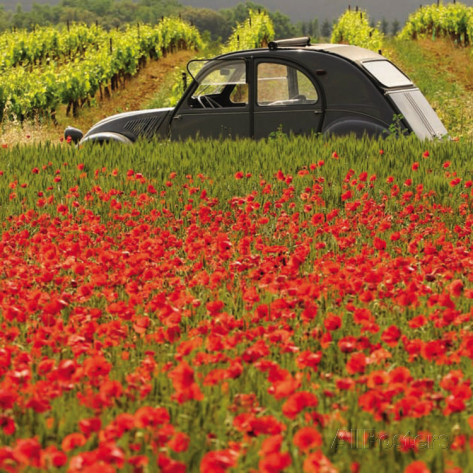 La 2CV aux coquelicots - photo de Julien Lautier