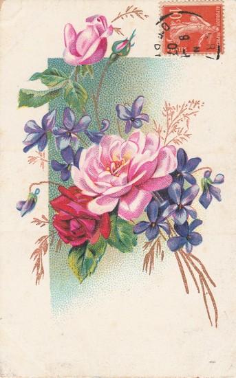 Roses 1907