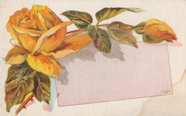 Roses jaunes -1910